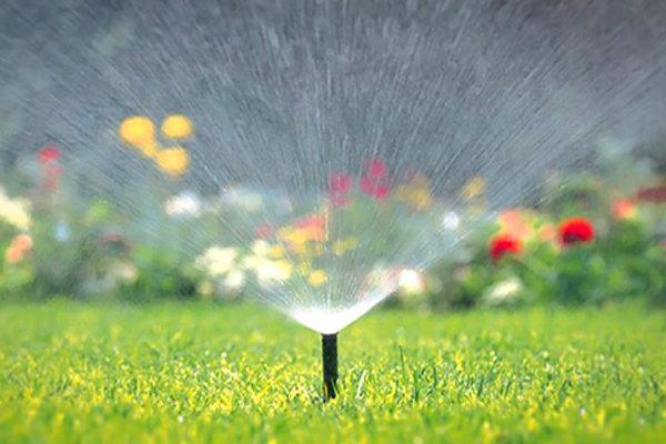 مزایده آبیاری در افوس